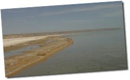 DANS la mer d'Aral